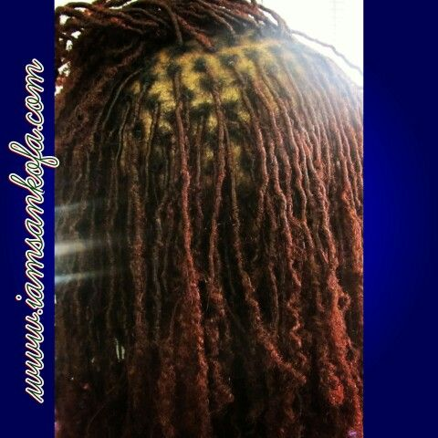 Microloc Extensions Neat, properly installed, and maintained by Sankofa @www.iamsankofa.com. Reclaiming One Krown At A Time in Inglewood CA 90305. Follow me on Instagram at I_am_sankofa. #locs #locmaintenance #teamlocs #sisterlocks #sisterlockextensions #dopehair #naturalhair #dreadlocks #dreadlockextensions #microlocs #locs
