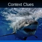Power point teaching students strategies for identifying and using context clues in a reading selection. Ideal for 2nd, 3rd, 4th and 5th grade.  Re...