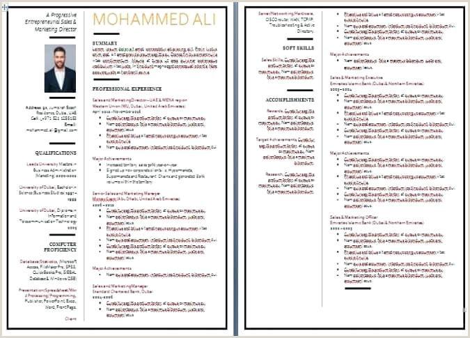 Latest Cv Format In Sri Lanka Resume Writing Examples Cv Format Sales Resume