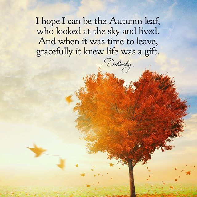 Autumn Quotes Inspirational EnergyHealingCenter (@EnergyHealingGA) | Twitter | Inspire  Autumn Quotes Inspirational