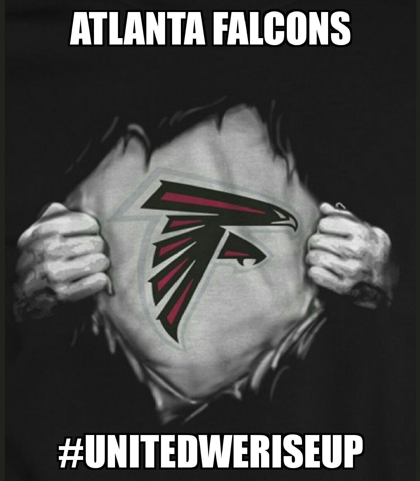 100 Atlanta Falcons Home Decor