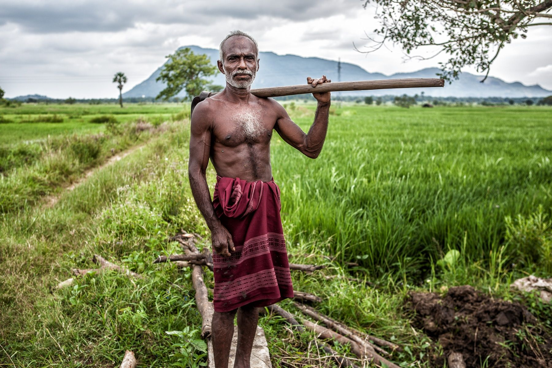Sri-Lanka Farmer | Sri lanka, Sri lankan, World of color