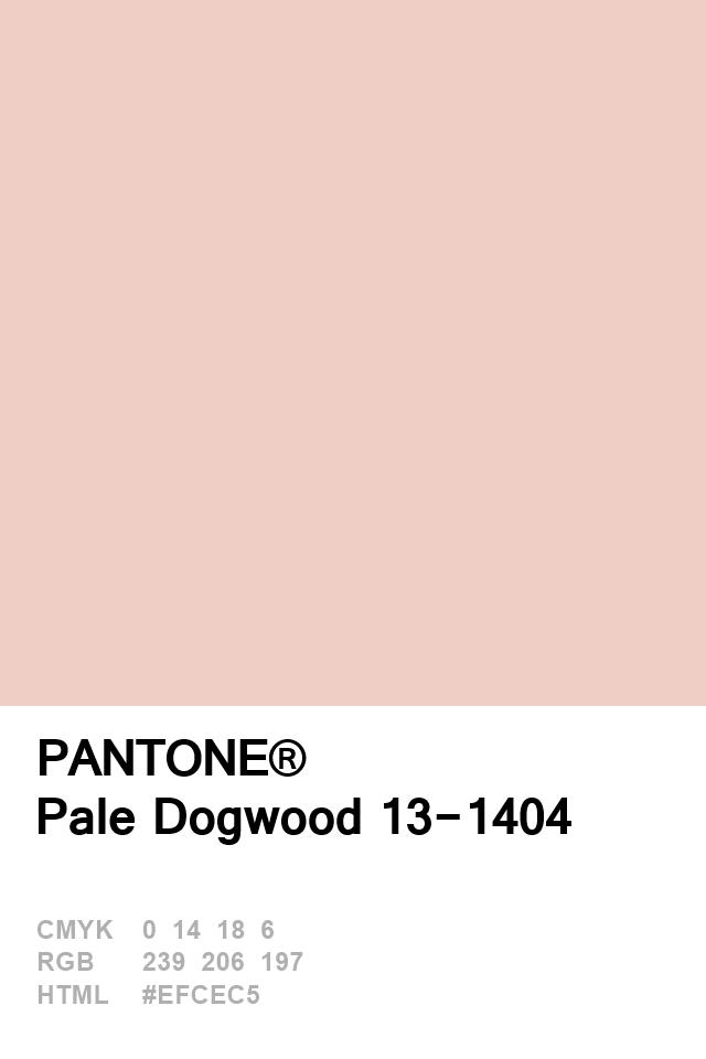 Pantone 2017 Pale Dogwood