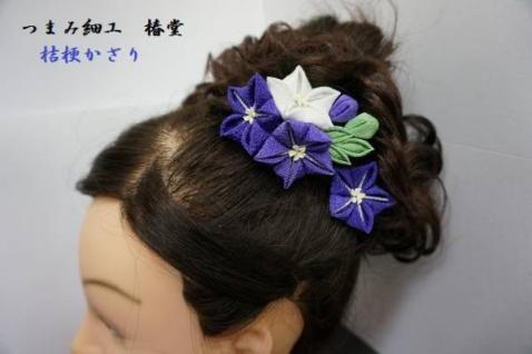 sim (478×318) kikyou bellflower