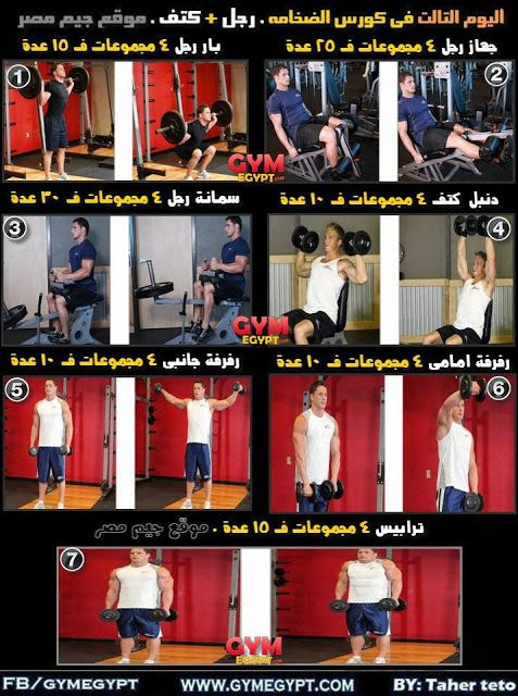 كورس الضخامة العضلية كمال أجسام جيم مصر Gymegypt جيم مصر Bodybuilding Gym Egypt