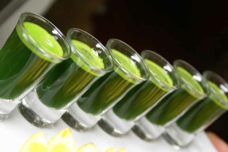 Amazing benefits of Wheat grass, check out the link! <3 <3 <3
