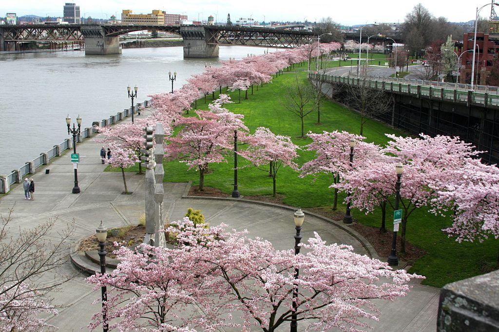 Waterfront Park, Portland Oregon