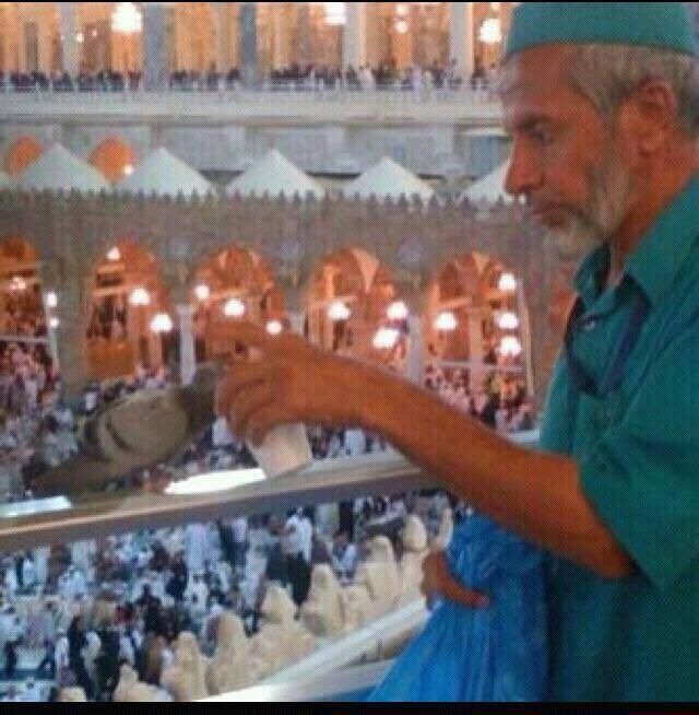 cleaner feeds a pigeon with water at masjid al haram makkah