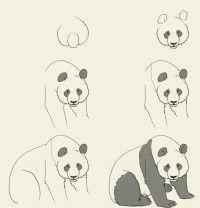 Résultats Google Recherche d'images correspondant à http://idrawgirls.com/tutorials/wp-content/uploads/2012/05/how-to-draw-panda-200x208.jpg