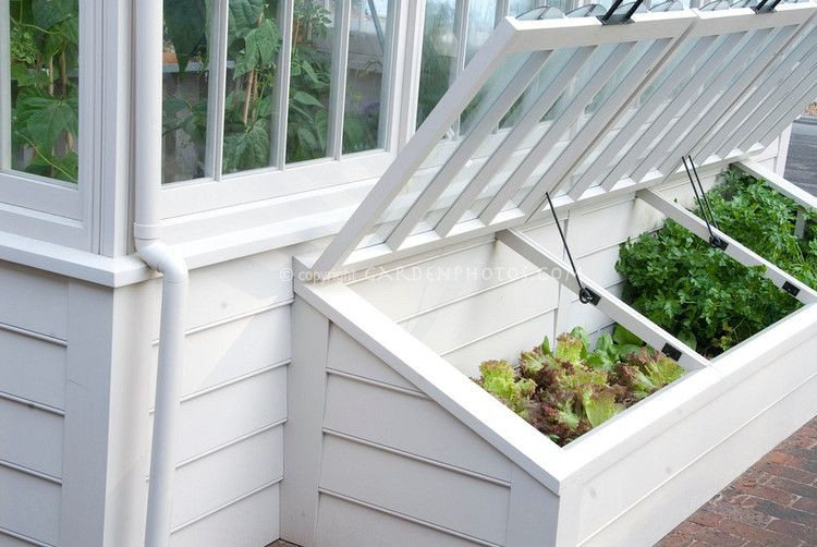 A cold frame helps in plant propagation and also in hardening off ...