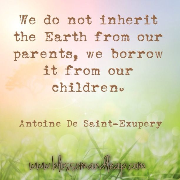 We do not inherit the earth from our parents we borrow it