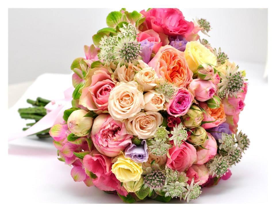 magia florilor