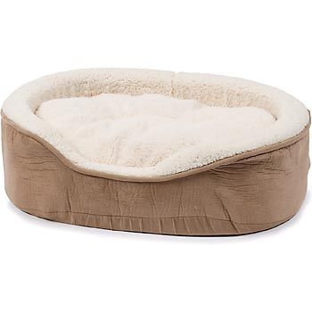 Petco Oval Tan And Cream Lounger Dog Bed Durable Dog Beds And