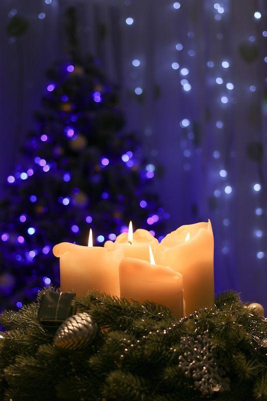 Magical Nature Tour *~BeWitchingBokeh~* Pinterest Christmas