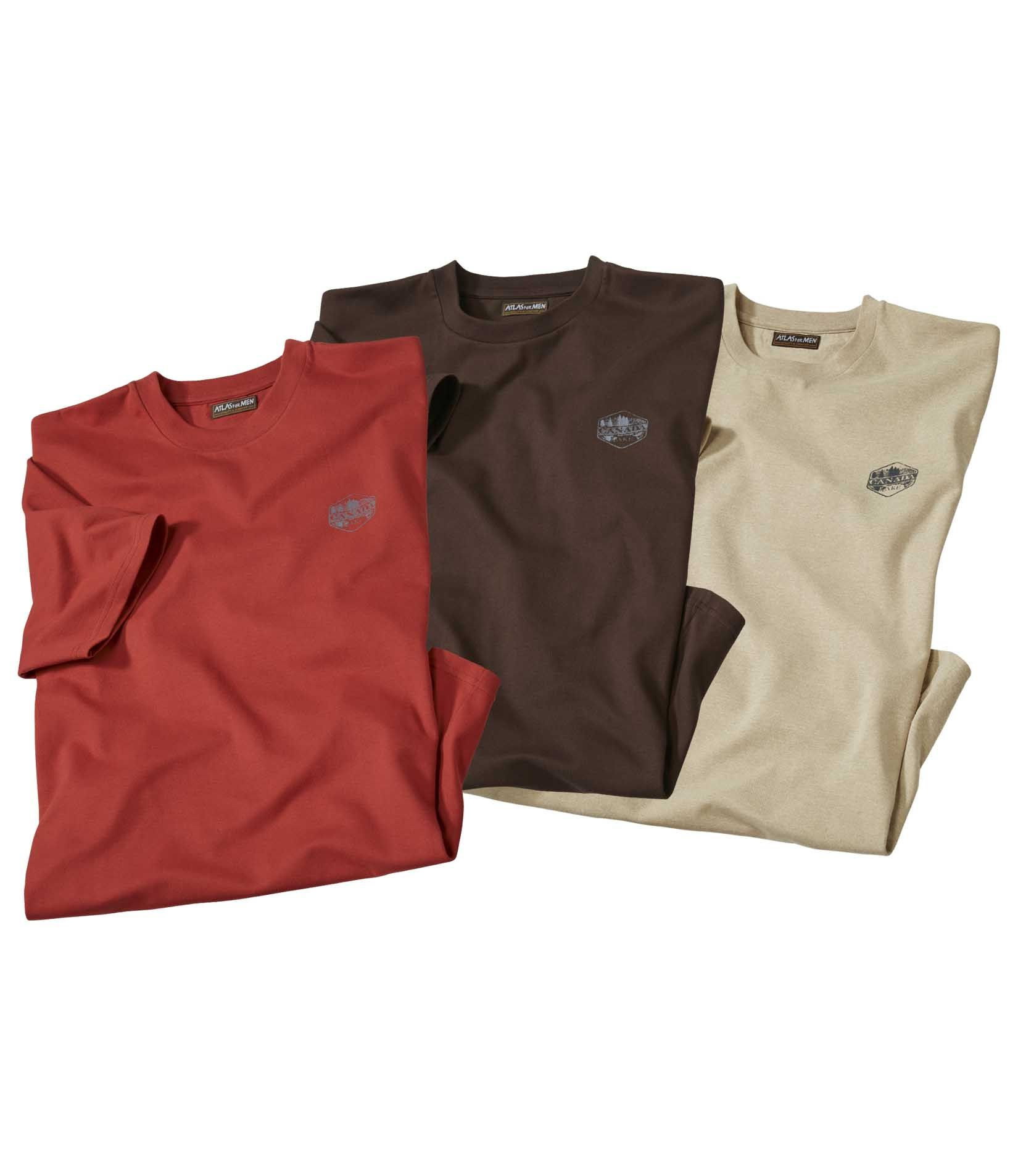 Lot de 3 Tee-Shirts Canada Forest #discount#promo#atlasformen#formen