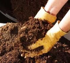 Vida Eco Organica eco life Compost abono Organico Abono