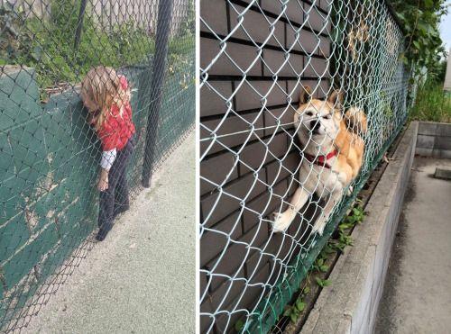 Thats my dog | Get more Pinterest Humor >> http://pinteresthumor.com