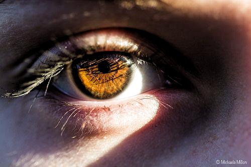Pin By Vaati On Make Up Brown Eyes Aesthetic Beautiful Brown Eyes Blonde Hair Brown Eyes