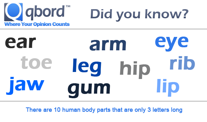body parts with 3 letters 3 letter parts world of example 20662 | 43103e4a543f6cacc008f09aabee5b25