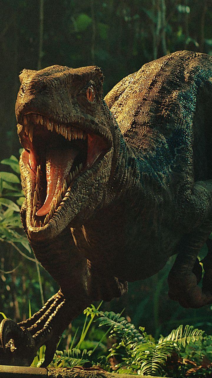 Movie, Jurassic World Fallen Kingdom, dinosaur, 720x1280