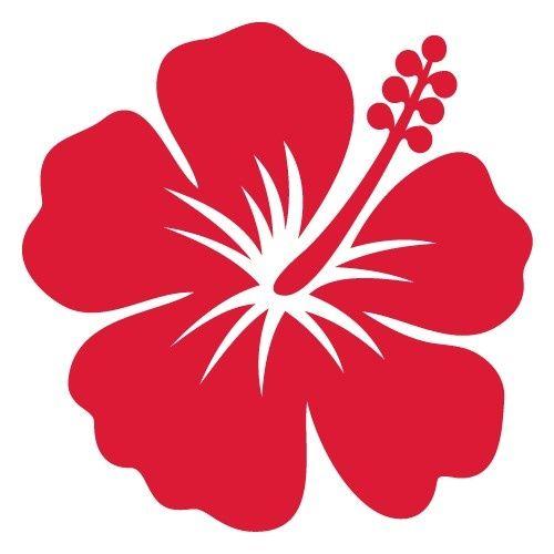 R sultat de recherche d 39 images pour hibiscus rouge dessin - Dessin d hibiscus ...