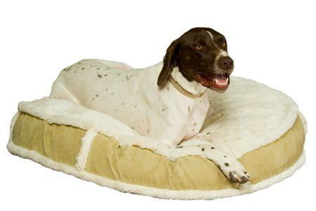K9 Ballistics Lux Round Bed Cream Furtan Micro Large 42 You Can Get Additional Details At The Image Link Note It Is Af Round Beds Dog Bed Furniture Dog Bed