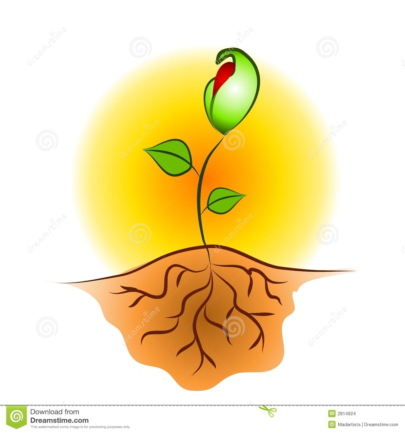 Image Result For Seedling Paintings