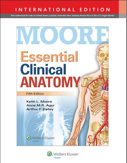 Essential Clinical Anatomy, 5th Edition [PDF]- Moore, Keith L ...