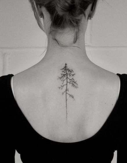 Photo of Super Pine Tree Tattoo Ribs Roots Ideas