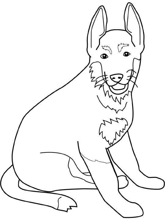dog color pages printable  Dogs coloring pages germanshepherd