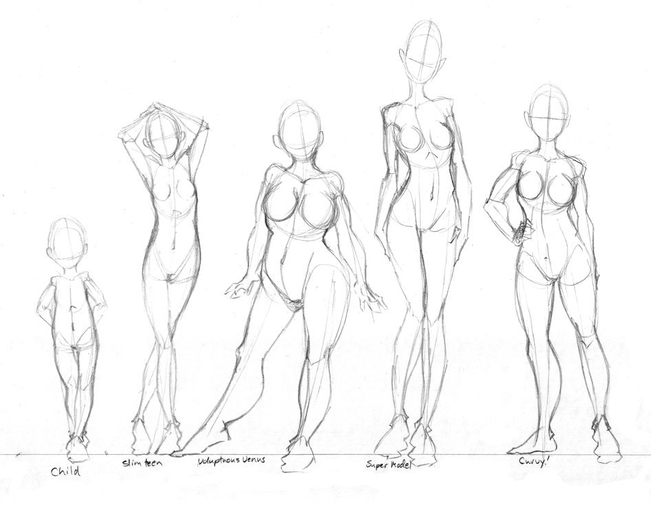 female body shapes practice by tabbykat on deviantart art