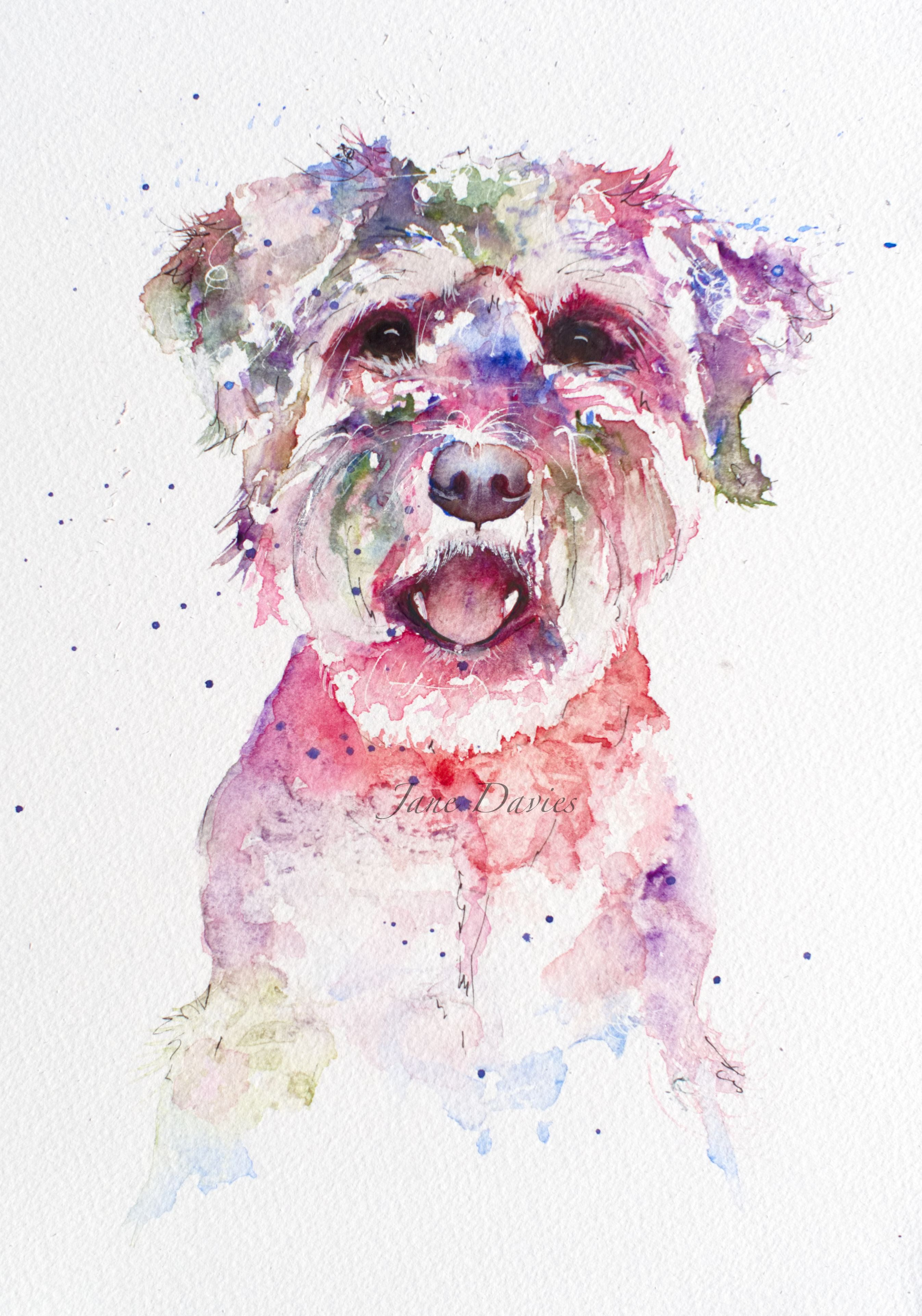 Colourful And Quirky Pet Portrait Painted By Watercolour Artist