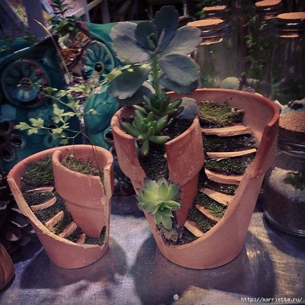 Miniature garden in the flower pot.  Ideas (1) (600x600, 237Kb)