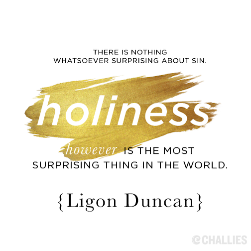 """""""There's nothing whatsoever surprising about sin. Holiness is the most surprising thing n the world."""" (Ligon Duncan)"""