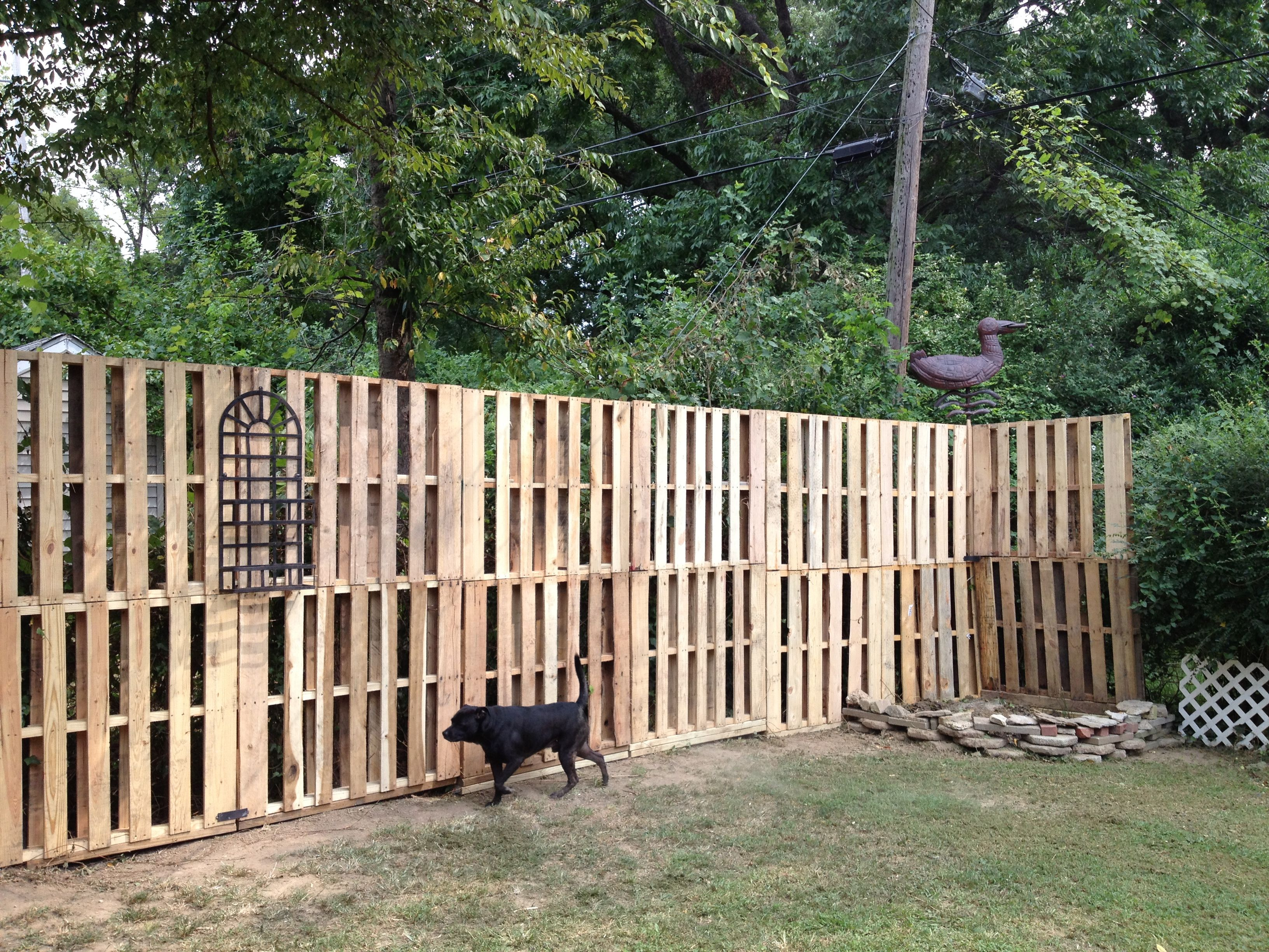 pallet fence w small plant hanger attached back yard. Black Bedroom Furniture Sets. Home Design Ideas