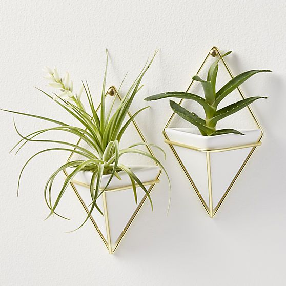 Set Of 2 Trigg Small Wall Vases Gifts Wishlist Pinterest