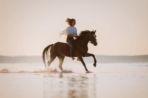 Pferd galoppiert am Strand