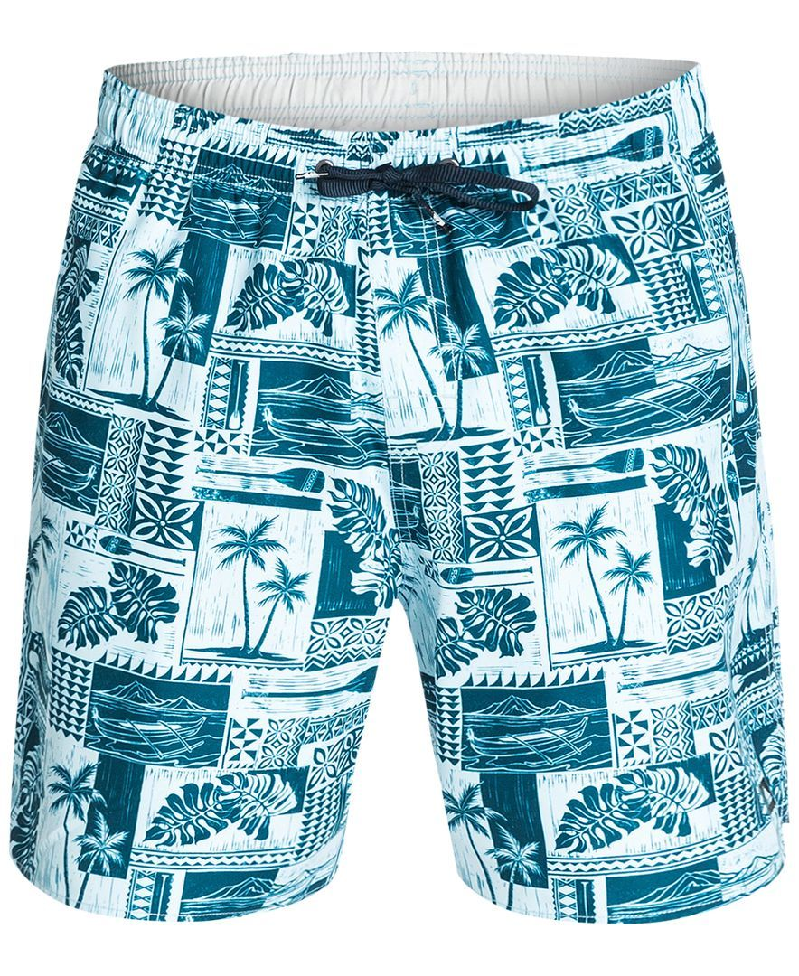 ac6d459531 Quiksilver Waterman South Bay Swim Trunks | shorts in 2019 | Trunks ...