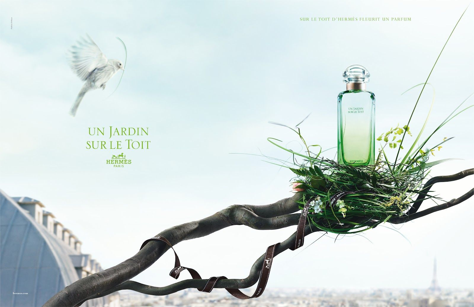 Hermes Fragrance Un Jardin Sur Le Toit Fragrance Perfume Ad