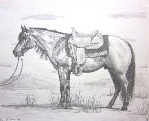 Quarter Horse Pencil Drawings | Horse Art | Pinterest ...