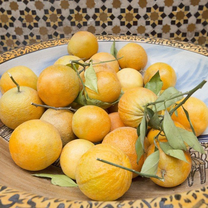 The courtyard at the Ryad Dyor is lined with fruit trees, and there are always fresh pomegranates and oranges on the big communal tables.