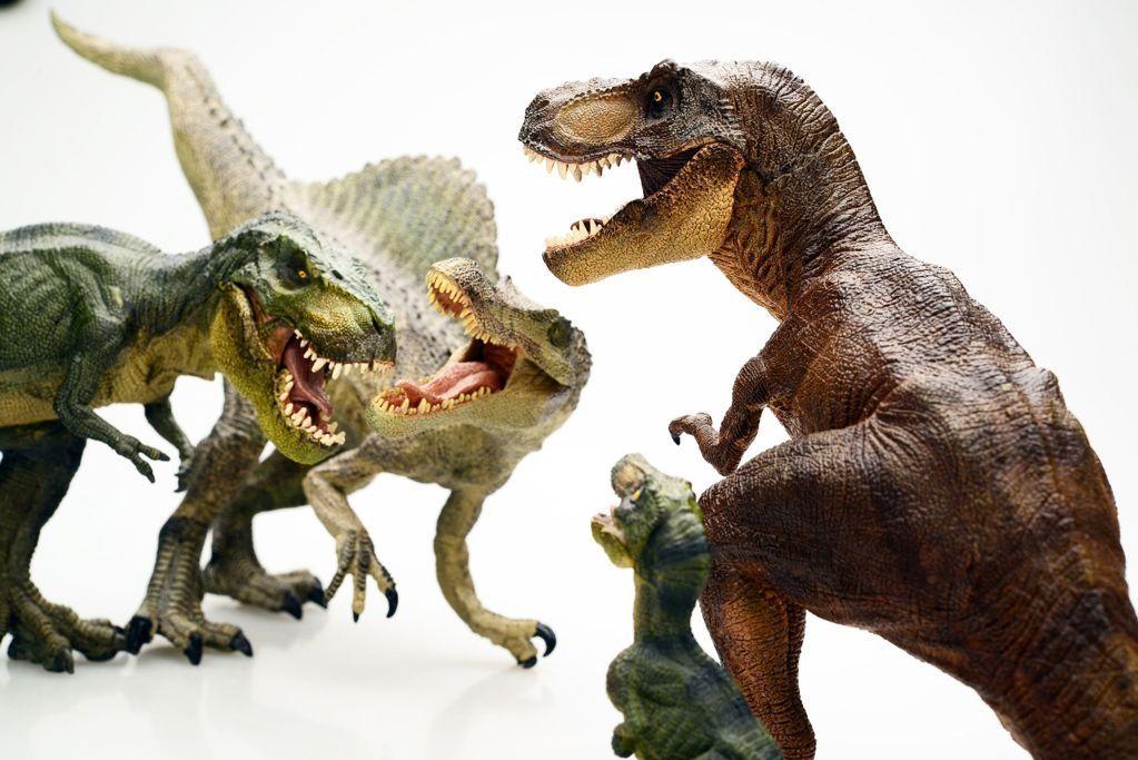 Tyrannosaurus_tiranosaurio_dinosapiens_9.jpg 1023×683 pikseli