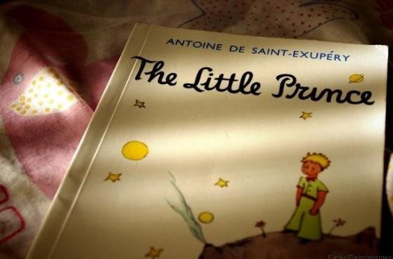 """5 wissenschaftlich belegte Wahrheiten aus """"Der kleine Prinz"""" http://www.huffingtonpost.de/2016/04/07/wahrheiten-aus-der-kleine-prinz_n_9632988.html"""