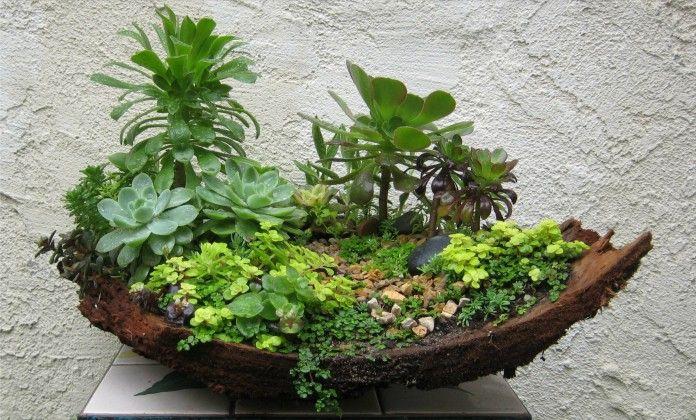 Fairy Garden Ideas and Miniature Gardening Trends | Pinterest | Mini ...