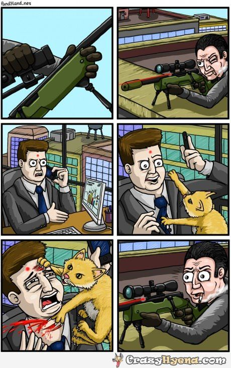 sniper-red-dot-cat-assassination-hilarious-cartoon.