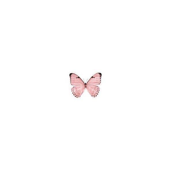 Pink Butterflies Sweetdreams Butterfly Wallpaper Iphone Small Tattoos Butterfly Tattoo