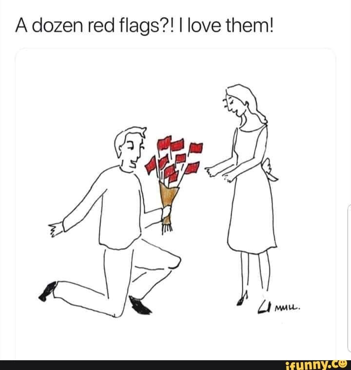 A dozen red flags?! I love them! - ) | Red flag quotes, Red flag,  Relationship red flags