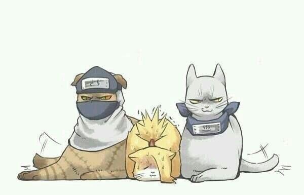 a-CAT-suki Kakuzu, Deidara, Hidan   Naruto   Naruto, Naruto