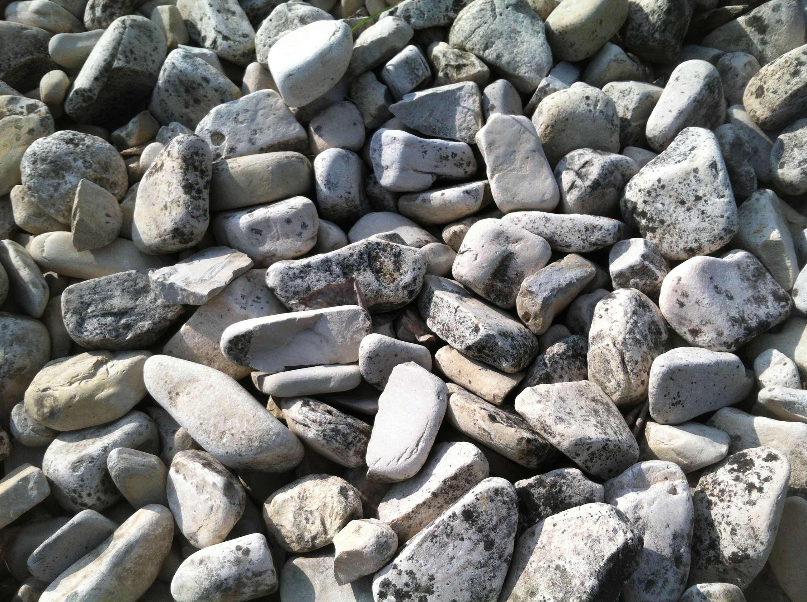 love rocks love em love em love em!
