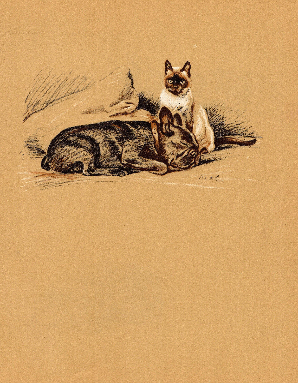 1937 Antique French Bulldog Print Siamese Cat Art Lucy Dawson Etsy In 2020 Antique Dog Prints Cat Art Illustration Dog Art